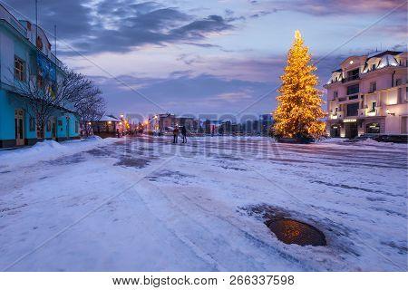 Christmas Tree In The City Center. Lovely Postcard Of Uzhgorod, Ukraine