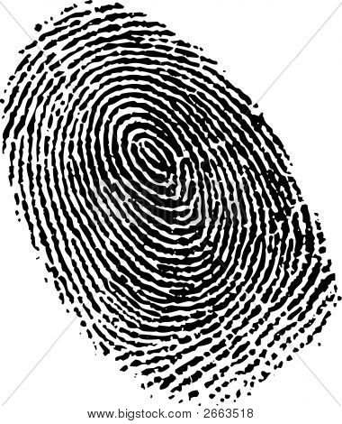 Fingerprint In Vector