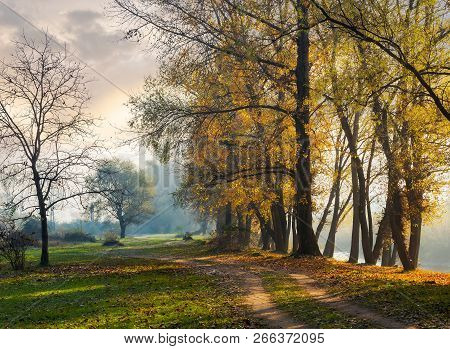 Autumn Scenery Near The River. Path Along The Embankment. Tall Trees In Golden Fliiage On The Bank