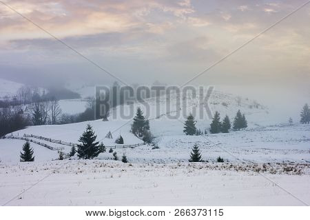 Winter Countryside On A Foggy Morning. Mysterious Scenery With Trees On Snowy Slopes Beneath A Beaut