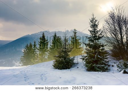 Beautiful Winter Scenery In Mountains. Composite Image With Forest On Snowy  Slope And Distant Ridge