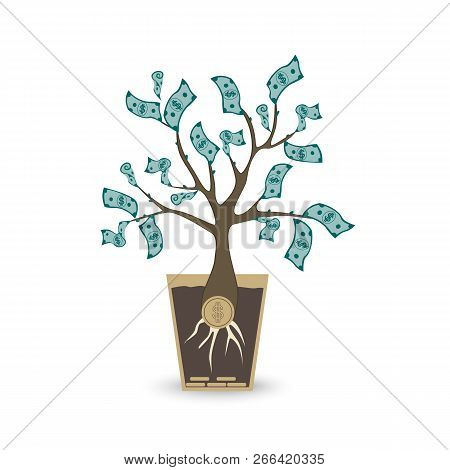 Ypung Money Tree. Isolated Vector Object On White Background.