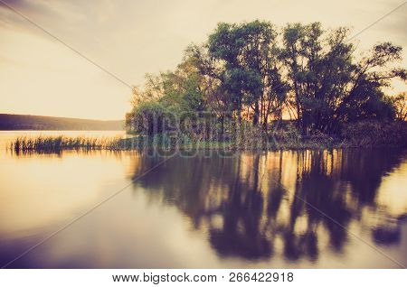 A Beautiful Lake With Bulrush And Trees