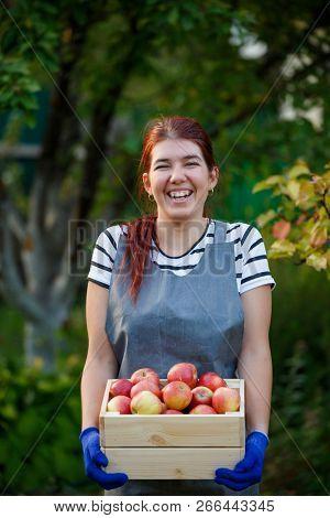 Photo of happy girl gardener with harvest of apples in wooden box in garden