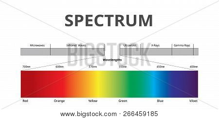 Visible Spectrum Color, Electromagnetic Spectrum That Visible To The Human Eye, Sunlight Color, Info