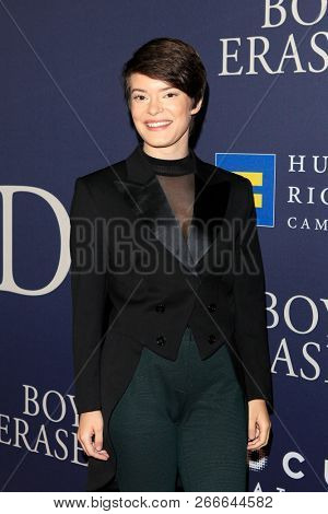 WEST HOLLYWOOD - OCT 29: Emily Hinkler arriving at the Premiere of Boy Erased at the Directors Guild of America on October 29, 2016 in West Hollywood, California