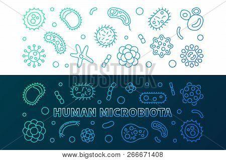 Human Microbiota Colorful Horizontal Banners Set. Vector Concept Thin Line Illustration