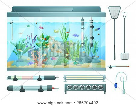 Aquarium And Devices Set For Maintaining Temperature Balance. Fish And Plant Seaweeds With Rocks. Ho