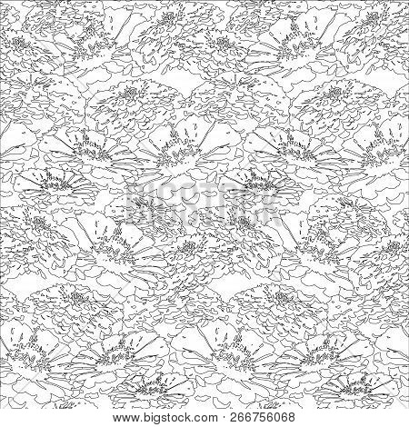 Seamless Abstract Zinnia Floral Seamless Pattern Monochrome Design Element Stock Vector Illustration