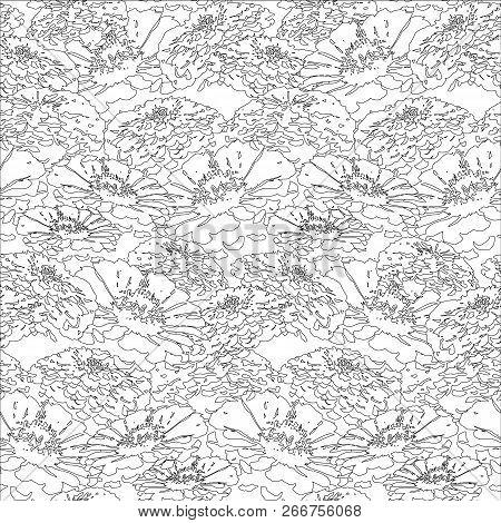 Seamless Abstract Zinnia Floral Seamless Pattern Monochrome Design Element Stock Vector Illustration