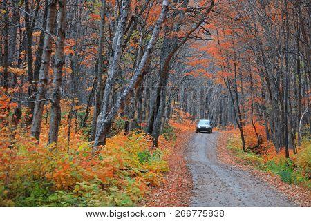 Scenic road through Parc de la Jacques-cartier national park in Quebec