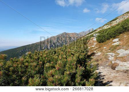 Great Cold Valley In Vysoke Tatry (high Tatras), Slovakia. The Great Cold Valley Is 7 Km Long Valley
