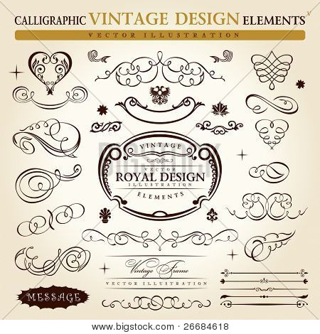 calligraphic elements vintage ornament set. Vector frame ornament decor