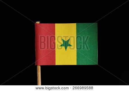 A official and original flag of Senegal on toothpick on black background. A vertical tricolour of green yellow and red with green star at the centre. poster