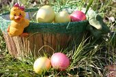 Easter eggs is in the green basket near toys chicken and young frog. poster
