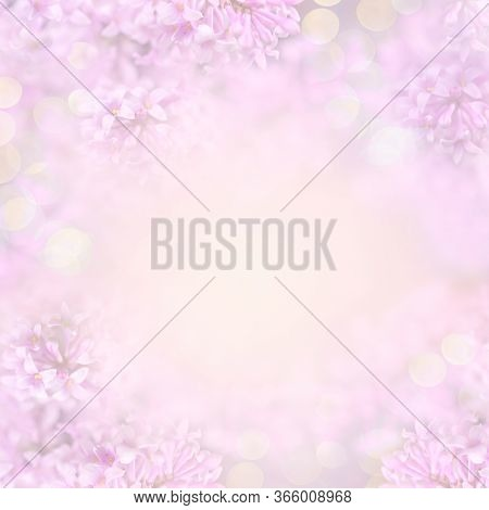 Beautiful Blurred Close-up Pink Mockup With Flowering Lilac Tree Flowers And Golden Bokeh For Invita