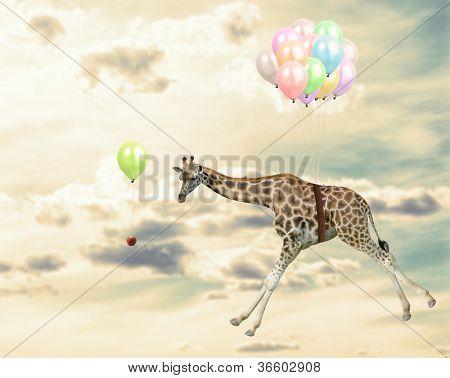 Giraffe Running Behind An Opportunity In Sky poster