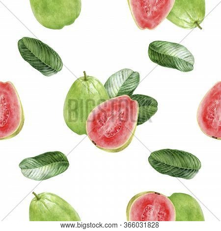 Hand Drawn Watercolor Guava Hand Drawn Watercolor Illustration. Seamless Pattern.