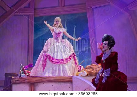 Cinderella's Dress And Stepmother