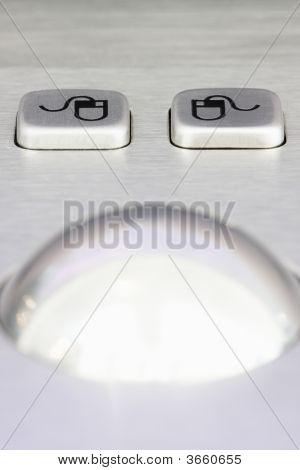 Mouse Buttons And Scrollwheel