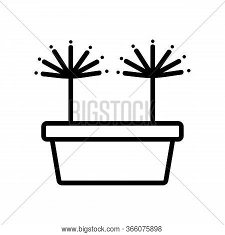 Sprouted Dill In Pot Icon Vector. Sprouted Dill In Pot Sign. Isolated Contour Symbol Illustration