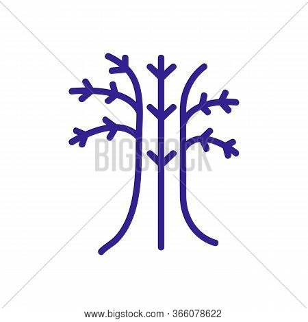Fennel Trunk Icon Vector. Fennel Trunk Sign. Color Symbol Illustration