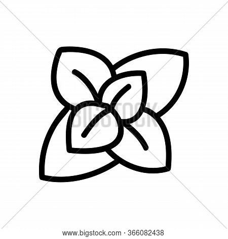 Inflorescence Of Fragrant Oregano Icon Vector. Inflorescence Of Fragrant Oregano Sign. Isolated Cont
