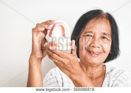 The Elderly Asian Women Hold Denture Models. Concepts Of Senior Oral Health Problems And Dental Care