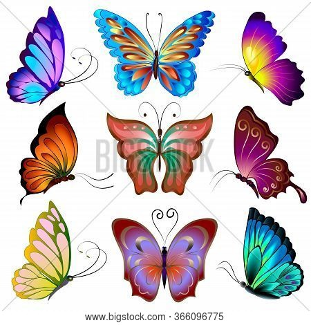 Collection Of Multi-colored Butterflies.vector Set Of Colored Butterflies On A White Background.