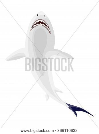 Shark. Big Dangerous Marine Predator. Vector Shark Character. Flat Isolated Illustration On A White