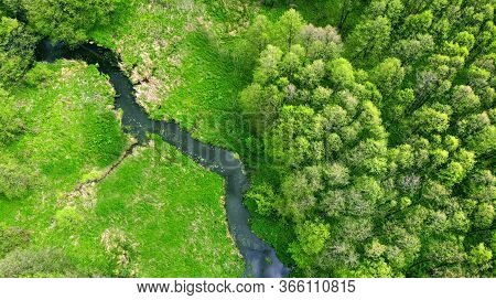 Aerial. River In The Forest. Beautiful Spring Nature. View Above