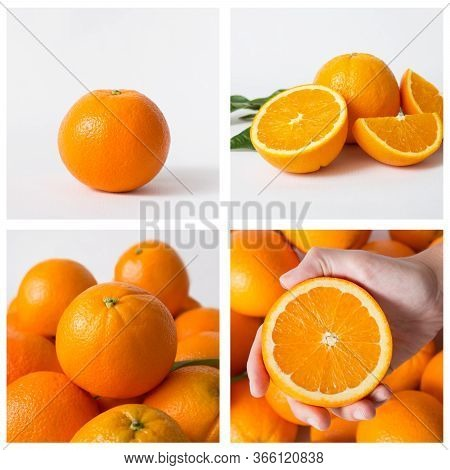 Sweet Oranges Isolated On White Background. Hand Holding Half Of Orange And Composition Of Many Oran