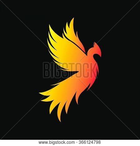 Phoenix Bird Logo Vector Concept  Eps 10 Ready To Use