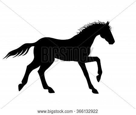 Horse Galloping - Vector Silhouette For Logo Or Pictogram. Hand Drawing. A Horse In A Canter Phase W
