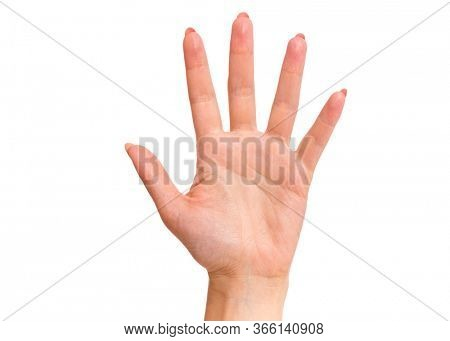 Female hand showing 5 fingers gesture, isolated on white background. Beautiful hand of woman with copy space. Hand doing gesture of number Five. Series of photos count from 1 to 5.