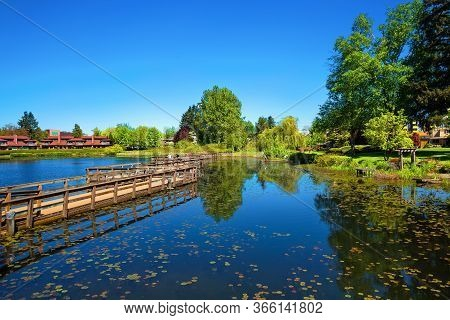 A Beautiful Lake In A Residential Area Of Abbotsford, Covered With Water Lilies, A Wooden Bridge Ove
