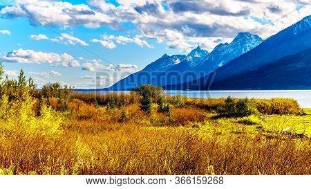 Sunset Over Fall Colored Landscape, The Teton Mountain Range And Jackson Lake In Grand Teton Nationa