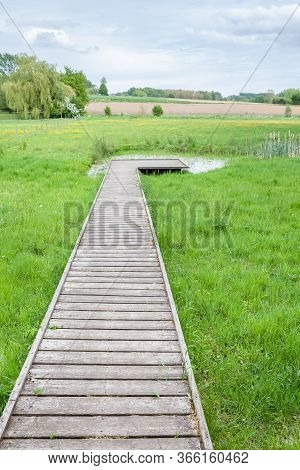Wooden Jetty Along A Natural Biological Pool That Is Full Of Life With Insects And Amphibians