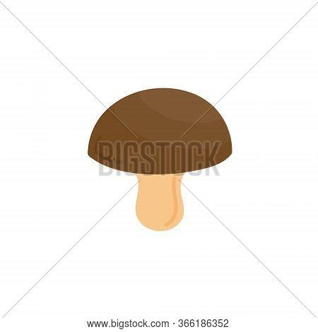 Mushroom Vector Illustration Icon. Brown Bolete, Cep, King Bolete, Penny Bun Drawing. Isolated.