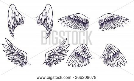 Sketch Angel Wings. Hand Drawn Different Wings With Feathers. Black Bird Wing Silhouette For Logo, T