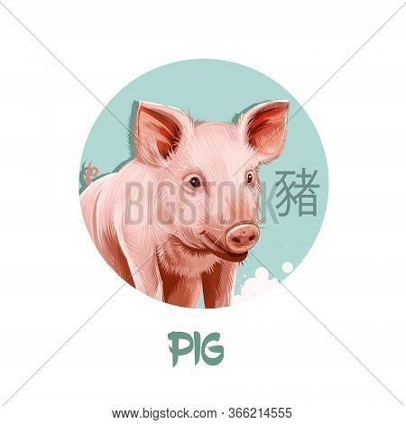 Pig Chinese Horoscope Character Isolated On White Background. Symbol Of New Year 2031. Pet Pink Anim
