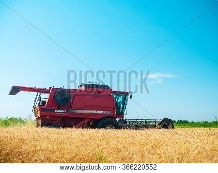 Wheat Harvesting In The Summer. Red Harvester Working In The Field. Golden Ripe Wheat Harvest Agricu