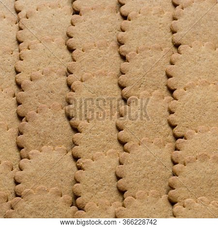 Biscuit Background. Brown Round Cookies Texture. Fattening Unhealthy Concept