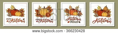 Set Of Autumn Hand Drawn Cards With Autumn Leaves, Pumpkins And Lettering Text. Rowan And Oak Leaves