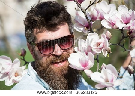 Man With Beard And Mustache Wears Sunglasses On Sunny Day, Magnolia Flowers On Background. Eye Prote