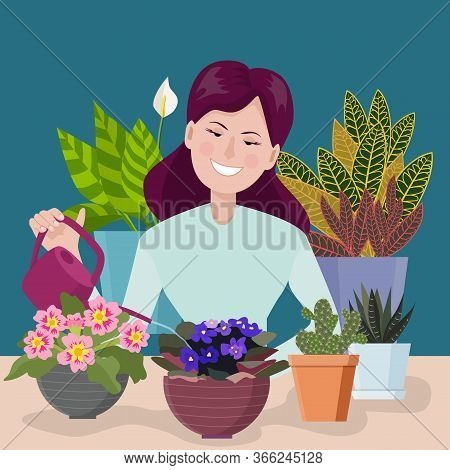 A Woman Is Caring For Indoor Plants: Watering The Plants In A Pot From A Watering Can. Hobby Gardeni