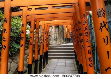 Tokyo, Japan - March 17, 2019: View Of Red Tunnel Of Torii Gate To Gojo Tenjinsha Shrine In Ueno Par