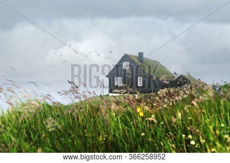 Foggy morning view of a house with typical turf-top grass roof and blue cloudy sky in the Velbastadur village on Streymoy island, Faroe islands, Denmark. Landscape photography