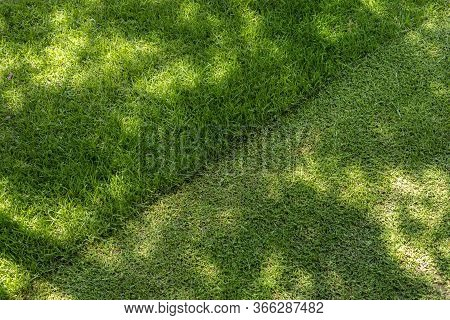 Straigh Diagonal Line Of Mowed Tall Grass At Home Backyard Or City Park. Lawn Trimming Service And G