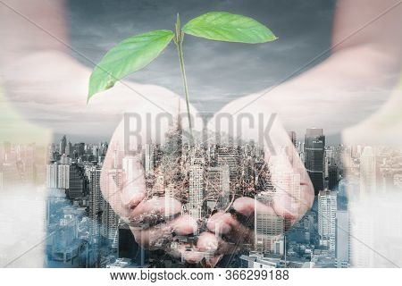 Save For Green Earth And Eco World Concept, Double Exposure Images Of Woman Hands Is Holding Seedlin